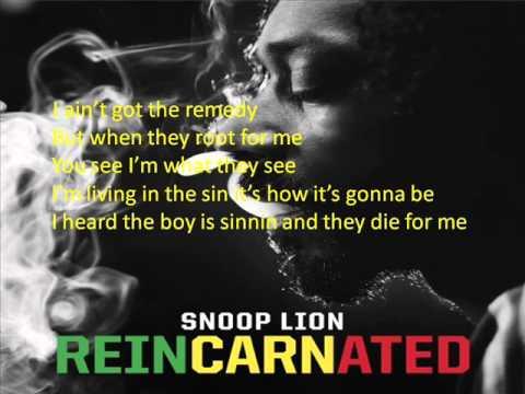 Snoop Lion - Remedy (feat. Busta Rhymes & Chris Brown) screen lyrics