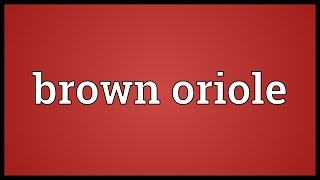 Brown Oriole Meaning
