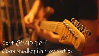 Clean medley improvisation | Cort G290 FAT | PINK FLOYD style