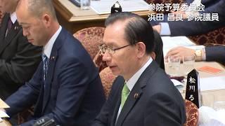 【公明党】2019/11/08 参院予算員会(浜田昌良参院議員)