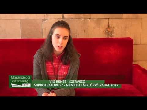 Mikrotezaurusz címmel szervezi meg a Németh László Elméleti Líceum a 2017-es gólyabált