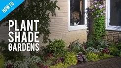 A Guide To Shade Gardening & Shade Garden Plants