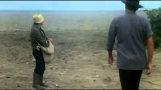 Укрощение Строптивого Разговор с воронами