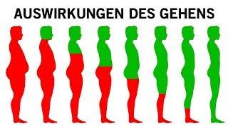 Was mit deinem Körper passiert wenn du täglich gehst!