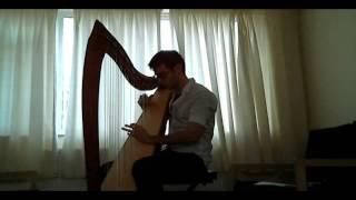 Final Fantasy IV - Theme Of Love - Harp Cover