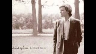 Watch David Sylvian Backwaters video