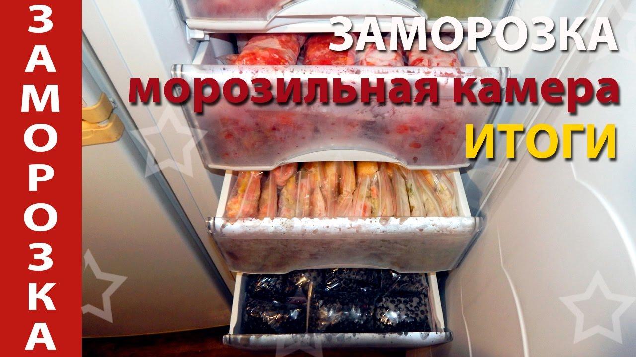 Итоговая заморозка овощей и ягод. Морозильная камера