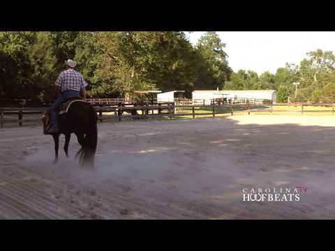 Carolina Hoofbeats 013 Pleasure Riding 10 27 13 1