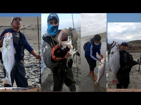Full pesca de