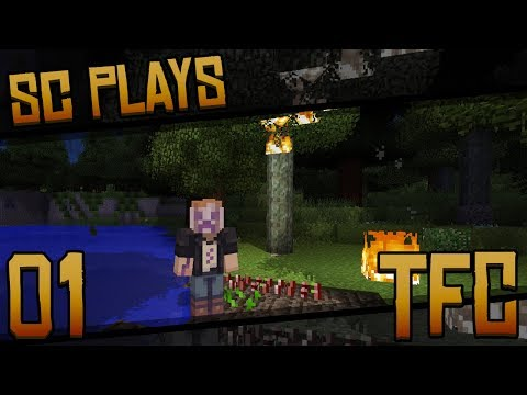 """Let's Try: TerraFirmaCraft 1.12.2   Part 01: """"First Time Playing!"""" [Modded Minecraft 1.12.2]"""