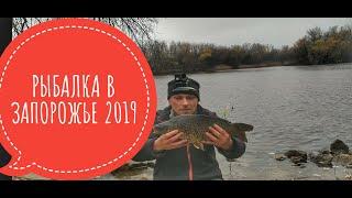 Карп Рыбалка в Запорожье 2019 О Хортица Порт Ленина Домаха