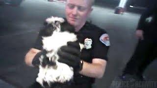 Bodycam Footage Shows Albuquerque Police Saving Choking Puppy