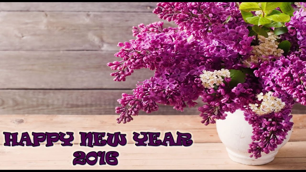 Download free happy new year 2016 whatsapp video latest new year download free happy new year 2016 whatsapp video latest new year greetings sms wishes 5 kristyandbryce Image collections