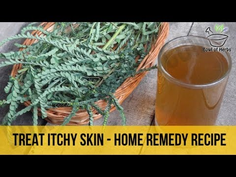 How To Treat Itchy Skin With Henna Leaves Drink Diy Recipe Bowl