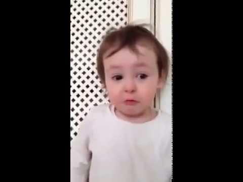 Видео и приколы смешные до слез