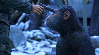 赤ちゃんだったシーザーが聖戦を戦うまで/映画『猿の惑星:聖戦記グレート・ウォー』特別映像