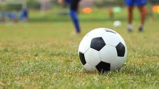 Soccer Ball on the Grass | Stock Footage - Videohive
