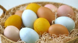 Make Naturally-Dyed Easter Eggs- Martha Stewart