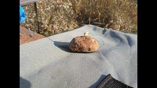 Рыболовный пластилин своими руками Прикормка для пружин кормаков убийцы карася со вкусом шоколада