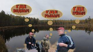 Поехали за грибами а оказались на рыбалке осень 2020