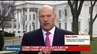 Cohn: Can Do 'Quite a Bit' on Dodd-Frank Without Congress