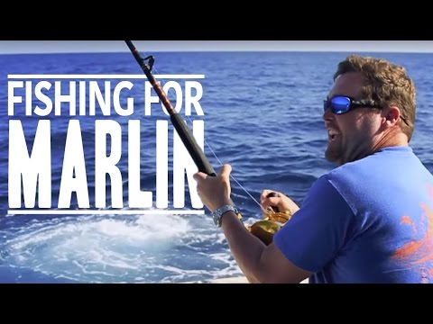 Ep. 1 - Bahamas Blue Marlin Fishing The Adventure Begins