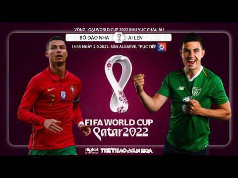 SOI KÈO Bồ Đào Nha vs Ai Len. Nhận định bóng đá World Cup 2022. Trực tiếp ONSPORT (1h45 ngày 2/9)