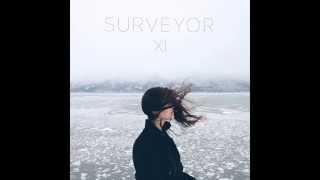 Surveyor - All I Hear is Noise