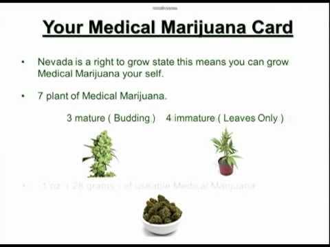 Nevada Medical Marijuana Licence.