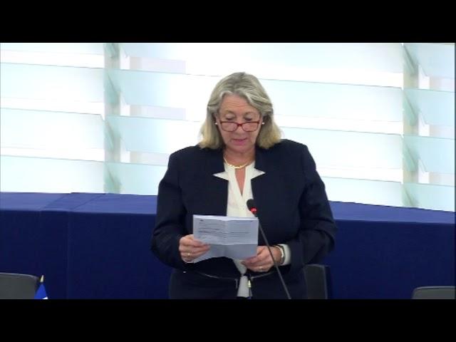 Joëlle Mélin sur les conditions de travail transparentes et prévisibles dans l'UE