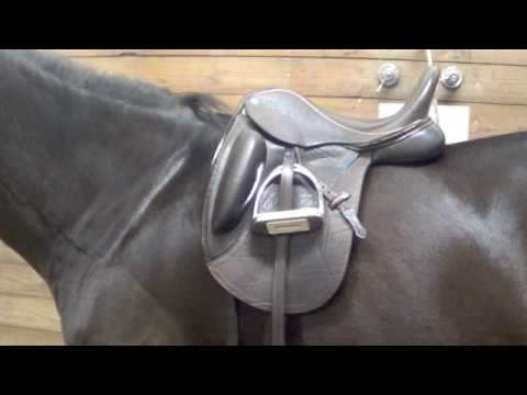 Does it Fit? Finding a Used Dressage Saddle by Equi learn