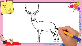 Dessin gazelle 2 FACILE - Comment dessiner une gazelle FACILEMENT