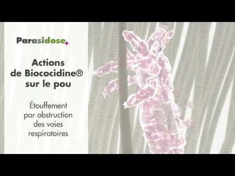 hqdefault - traitement anti-poux
