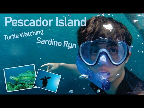 008 Bohol Cebu Tour Part 4   Pescador Island