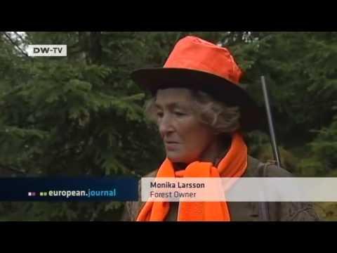 European Journal | Sweden: Forestry Boom