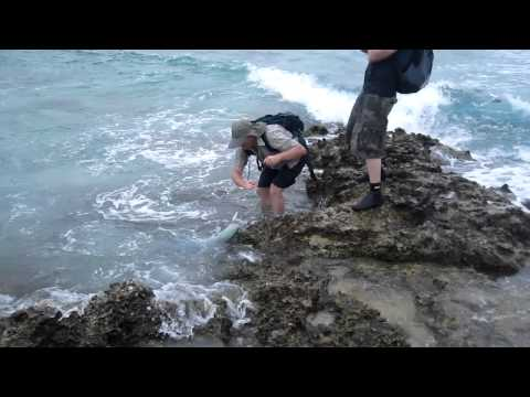 Bruiser Bleakley Blue fin trevelly Aniwa Vanuatu