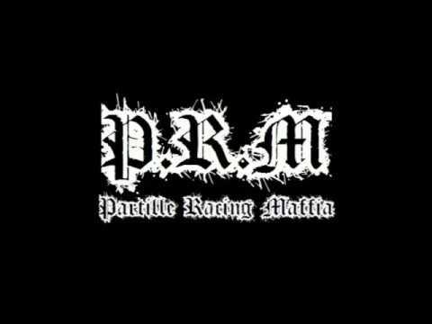 P.R.M - Nordic Assault
