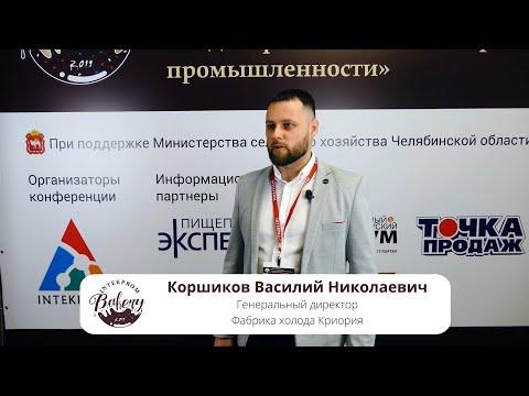 Коршиков Василий Николаевич, Генеральный директор Фабрики холода Криория