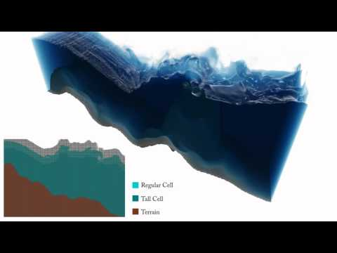 Real-Time Eulerian Water Simulation