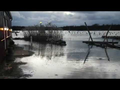 Stormflod i Nysted (link i beskrivelsen)