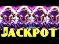 BUFFALO STAMPEDE slot machine HUGE JACKPOT HANDPAY WIN!