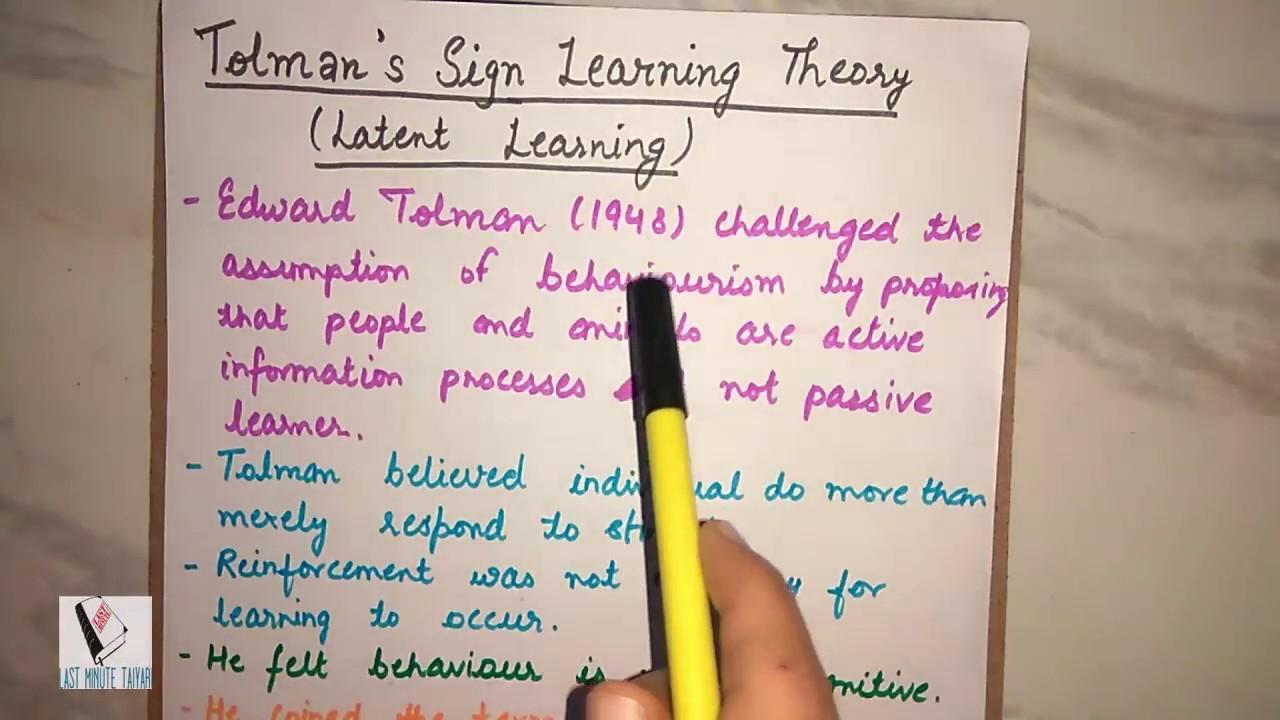 edward tolman theory
