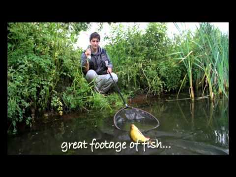 Fly Fishing For Coarse Fish -  Trailer