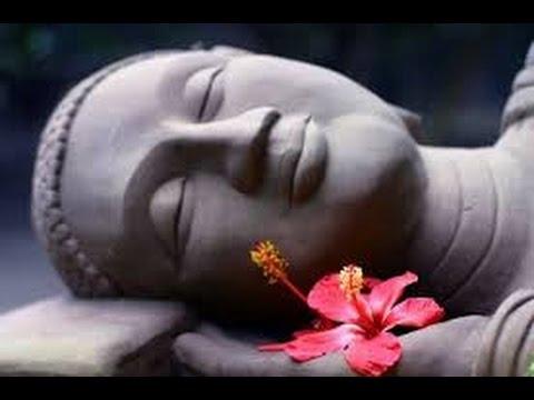 Las 62 Mejores Frases De Buda Amor Y Felicidad