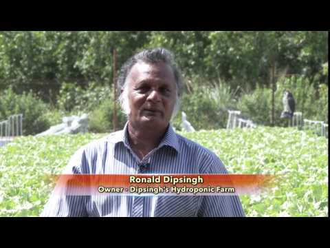 Farm Programme Feature - From Farm Worker to Farm Owner