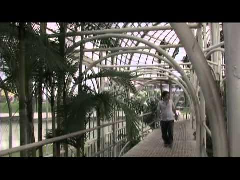 World Development book case study: sustainable urban development in Curitiba