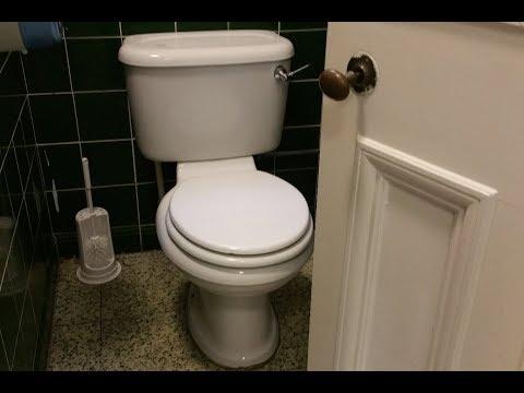Twyfords Albany toilets at Cardiff City Hall (Cardiff)