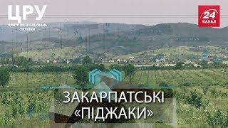 Дерибан на Закарпатті: чому 600 селян отримали землю і ...