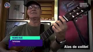 Cartesiana - Vicente Feliu YouTube Videos