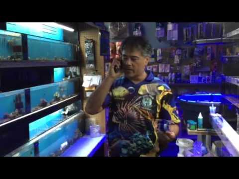 Frozen Fish Food Feeder / Defroster